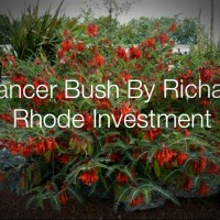 Richard Rhode Investments
